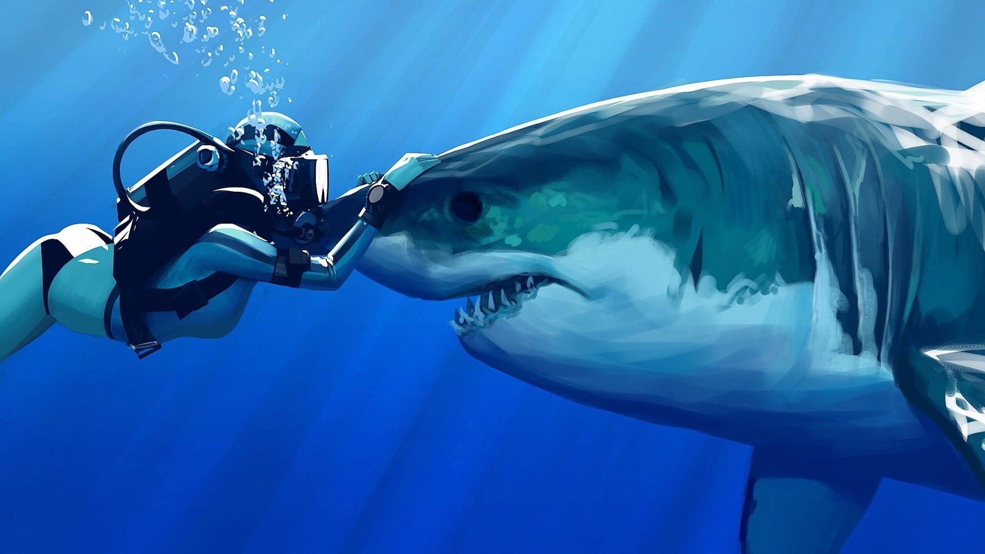 cámaras acuáticas y submarinas